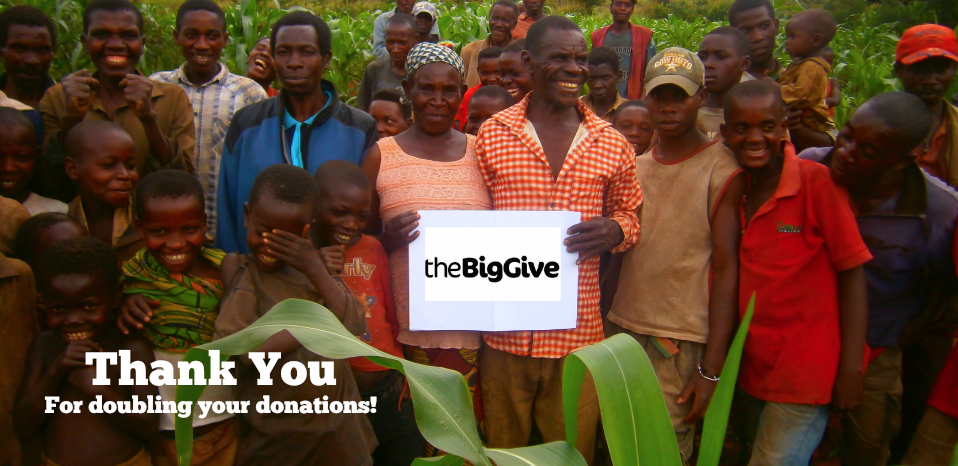 Thank you for donating to The Big Give